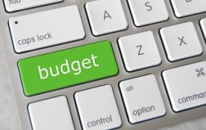 Budget Savings